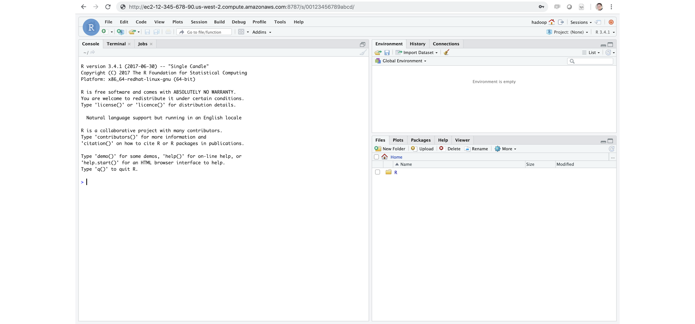 Install rstudio server pro | RStudio Server Professional